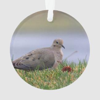 Dove Bird Ornament
