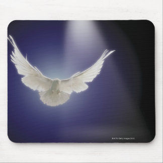 Dove flying through beam of light mouse pad