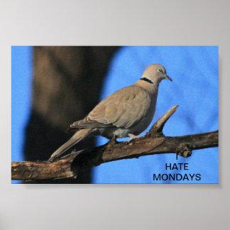 Dove Hates Mondays Poster