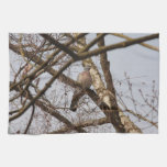 dove in bare tree kitchen towels