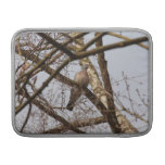 dove in bare tree sleeves for MacBook air