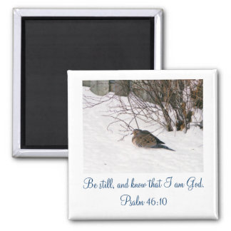 Dove in the Snow Scipture Magnet