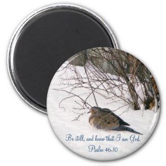 Dove in the Snow Scipture Magnet
