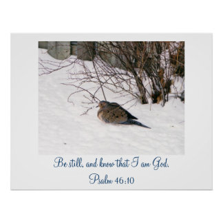 Dove in the Snow Scripture Poster