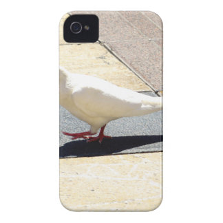Dove iPhone 4 Covers