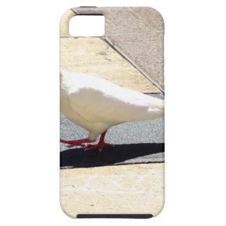 Dove iPhone SE/5/5s Case