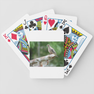 Dove on a Post Bicycle Poker Cards