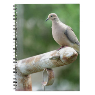 Dove on a Post Spiral Notebook