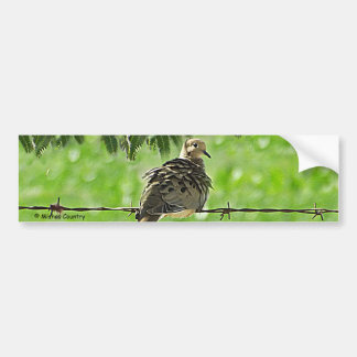Dove on a Wire Bumper Sticker