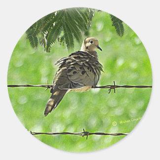 Dove on a Wire Sticker