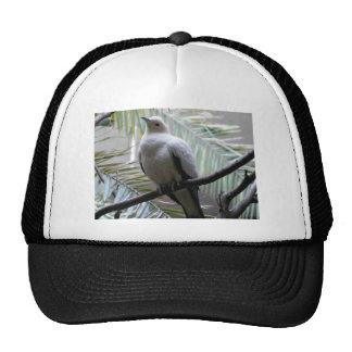 dove trucker hat