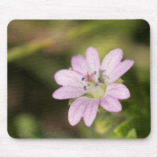 Dovesfoot Geranium Mouse Pad