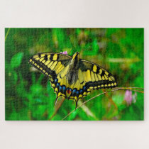 Dovetail Papilio Machaon Butterfly. Jigsaw Puzzle