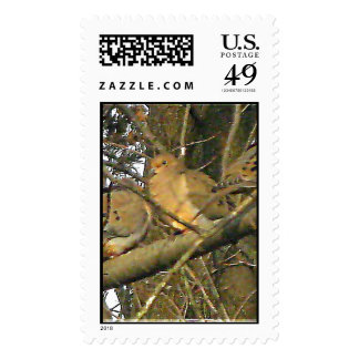 Dovey Doves Actual Stamps* Stamps