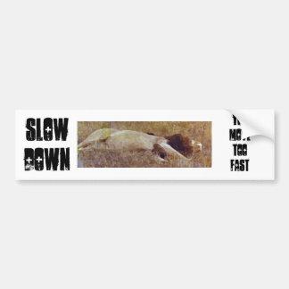 Dow lento, usted mueve demasiado rápido etiqueta de parachoque
