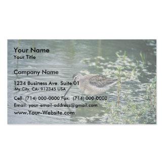 Dowitcher longirrostro tarjetas de visita