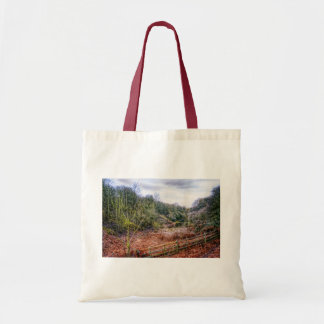 Down by the Stream HDR  tote bag