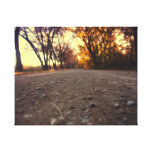down in the dirt canvas canvas print