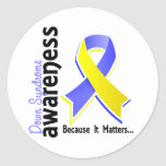 Down Syndrome Awareness 5 Classic Round Sticker