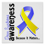 Down Syndrome Awareness 5 Poster