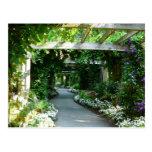 Down the Garden Path Postcards