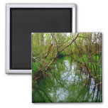 Down the River Refrigerator Magnet