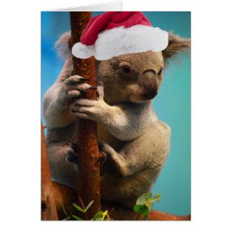 Down Under Christmas Koala Card