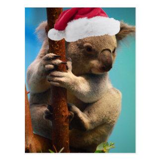 Down Under Christmas Koala Post Card