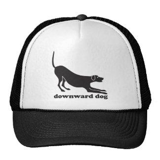 downdog_dog trucker hat