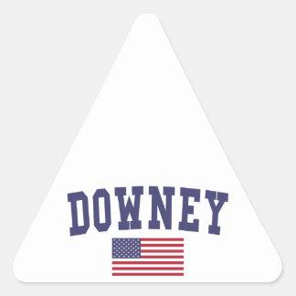 Downey US Flag Triangle Sticker