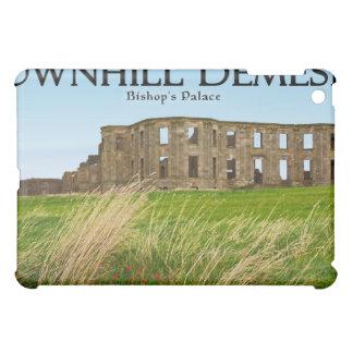 Downhill Demesne iPad Mini Covers