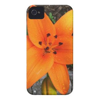 download jpg Case-Mate iPhone 4 carcasa