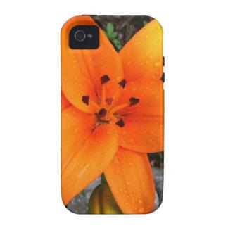 download jpg iPhone 4/4S carcasa