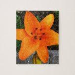download.jpg puzzles con fotos