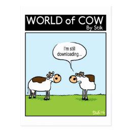 Downloading Cow Postcard