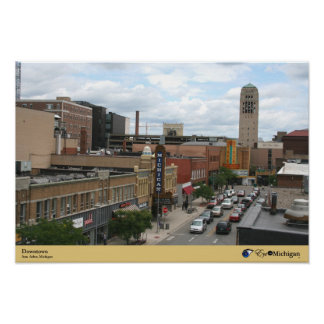 Downtown Ann Arbor, Michigan Poster