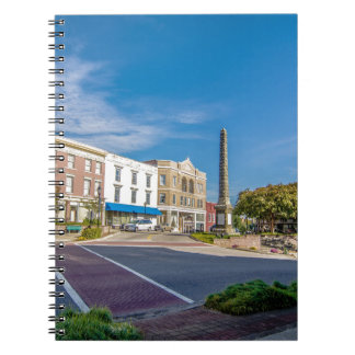 downtown chester town south carolina district coun notebook