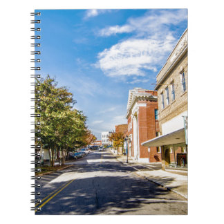 downtown chester town south carolina district notebook