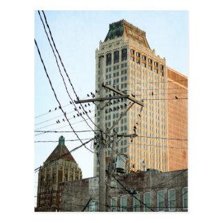 Downtown Tulsa with Birds Postcard