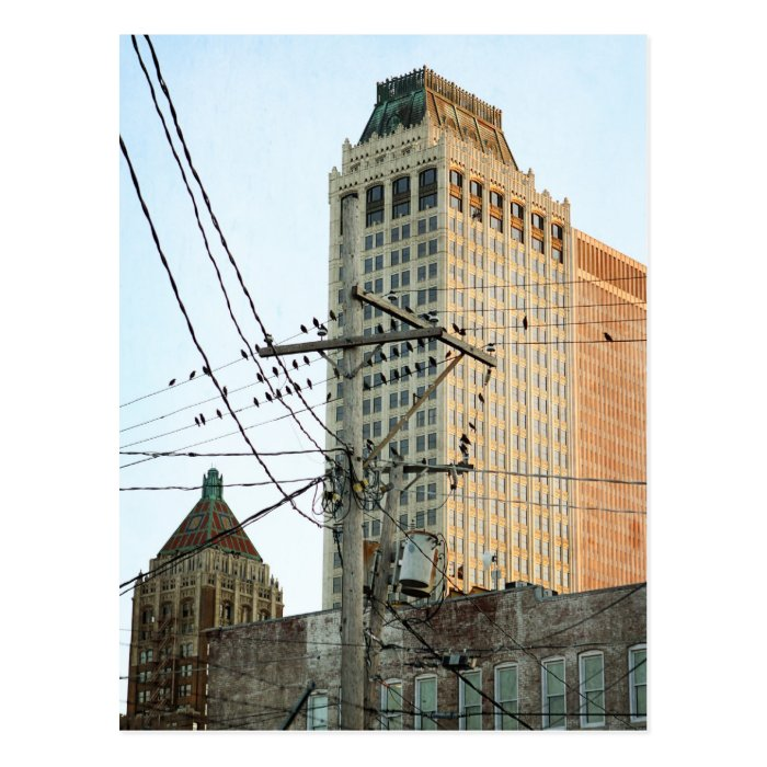 Downtown Tulsa with Birds Postcard