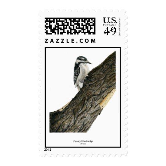 Downy Woodpecker (Female) Postage