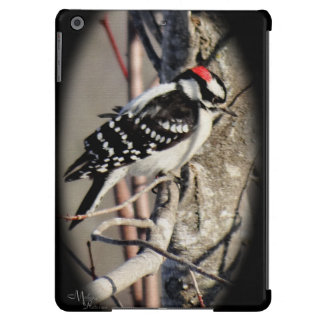 Downy Woodpecker iPad case- more choices-customize