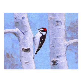 Downy Woodpecker Painting - Original Bird Art Postcard
