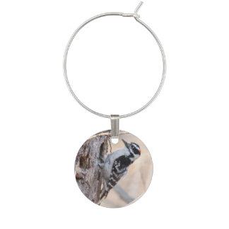 Downy Woodpecker Wine Glass Charm