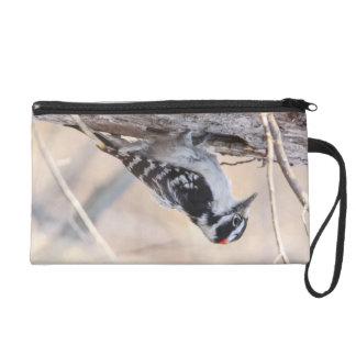 Downy Woodpecker Wristlet Purse