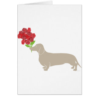 Doxie Delivers 12 Red Roses - Valentines Day!!!! Greeting Card