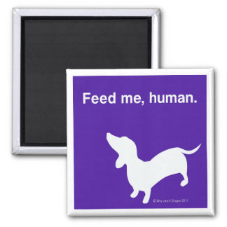 Doxie Feed Me Magnet
