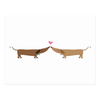 doxie love postcard