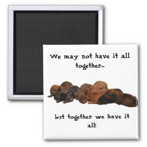 Doxie pups, We may not have it all together...,... Refrigerator Magnet