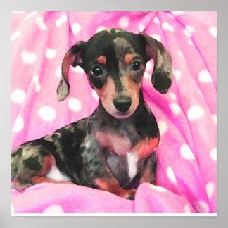 doxie rosado impresiones